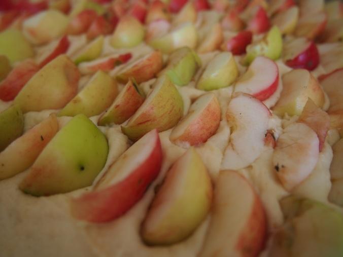 omenat säntillisessä rivissä